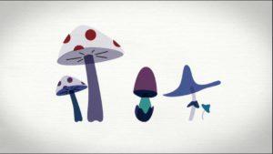 Les champignons au secours de la planète